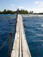 paysage_de_polynesie_1-12