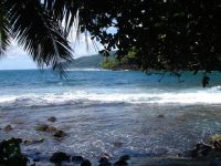 paysage_de_polynesie_1-20