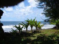 paysage_de_polynesie_1-26