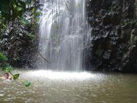 paysage_de_polynesie_1-30