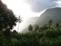 paysage_de_polynesie_1-33