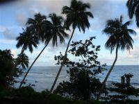 paysage_de_polynesie_1-35