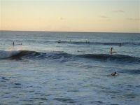 paysage_de_polynesie_1-42