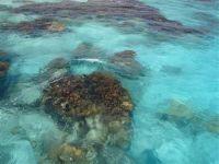paysage_de_polynesie_1-49