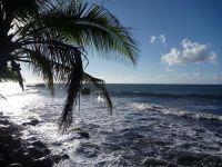 paysage_de_polynesie_1-51