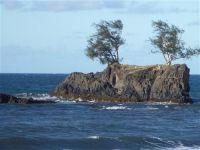 paysage_de_polynesie_1-52