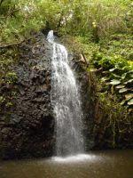 paysage_de_polynesie_1-61