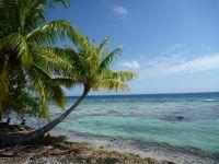 paysage_de_polynesie_1-73