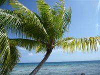 paysage_de_polynesie_1-74