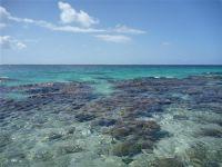 paysage_de_polynesie_1-80