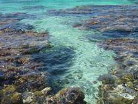 paysage_de_polynesie_1-81