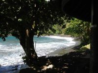 paysage_de_polynesie_1-88