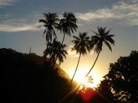 paysage_de_polynesie_1-89
